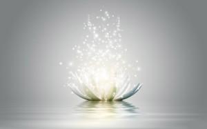 lotus-flower-wallpaper